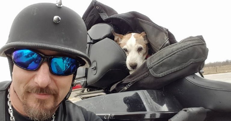 Biker Rescues Dog From Physical Abuse On The Side Of The Road